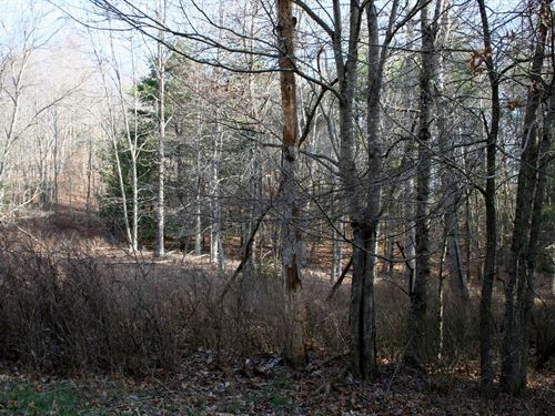 Lot 8 Low Hills Subdivision : Monterey : Highland County : Virginia