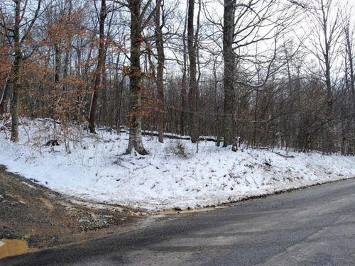 Building Lot In Rural Retreat, VA : Rural Retreat : Smyth County : Virginia