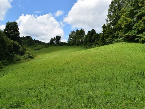 Unrestricted Floyd VA Land : Willis : Floyd County : Virginia