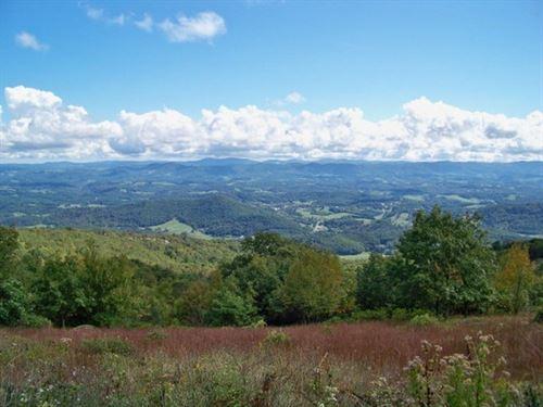 High Elevation Blue Ridge Mountain : Independence : Grayson County : Virginia