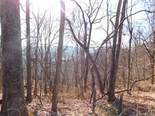 2.108 Acres in Capon Bridge, WV : Capon Bridge : Hampshire County : West Virginia