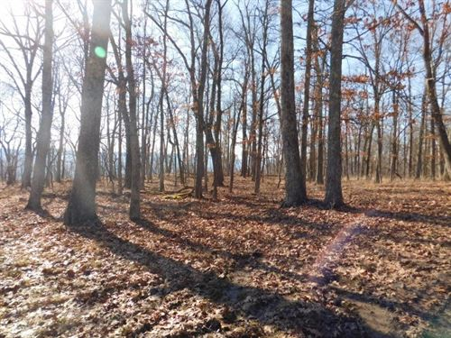 6.586 Acres in Capon Bridge, WV : Capon Bridge : Hampshire County : West Virginia