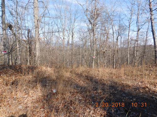 9.56 Acres in Gerrardstown, WV : Gerrardstown : Berkeley County : West Virginia