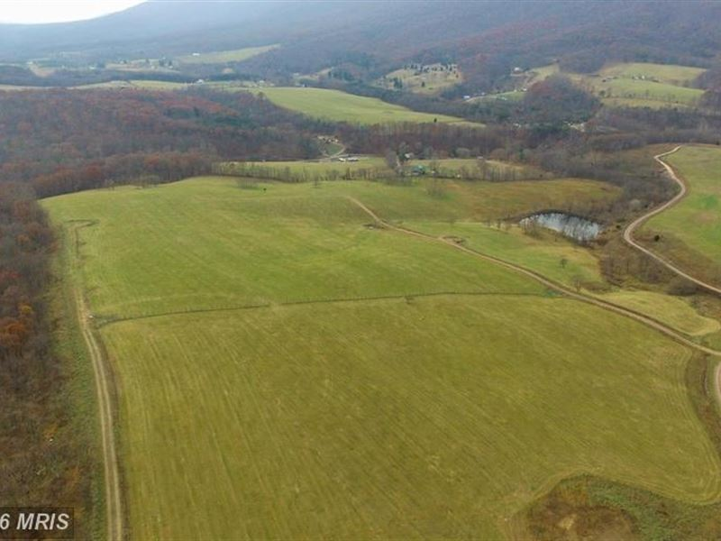 Bommarito West County >> 10.43 Acres Mountain Property : Lot for Sale : Paw Paw : Morgan County : West Virginia : LOTFLIP