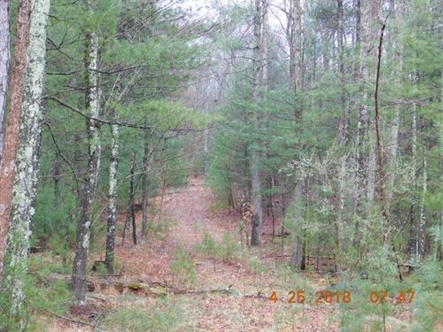 Land For Sale in Wardensville, WV : Wardensville : Hardy County : West Virginia