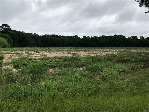 Land For Sale in Kinsey, AL : Kinsey : Houston County : Alabama