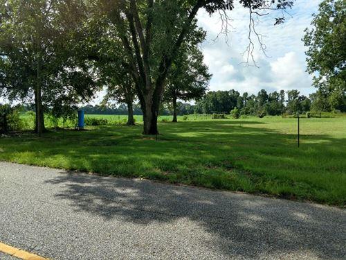 11 Acre Corner Lot : Pansey : Houston County : Alabama