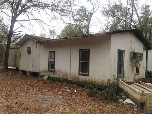 5.75 Acres, Well & Septic W Home : Samson : Geneva County : Alabama