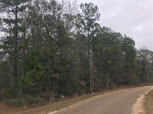 Land 2.5 Acres Malvern Loop : Slocomb : Geneva County : Alabama