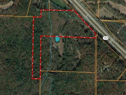 Vacant Land-20 Acres : Town Creek : Lawrence County : Alabama