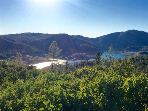 Lake View Oroville Real Estate : Oroville : Butte County : California