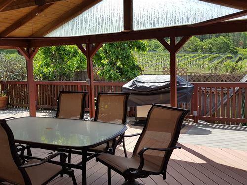 Northern California Home Vineyard : Alderpoint : Humboldt County : California