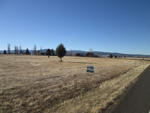 Cal Pines Parcel Near Lodge : Alturas : Modoc County : California