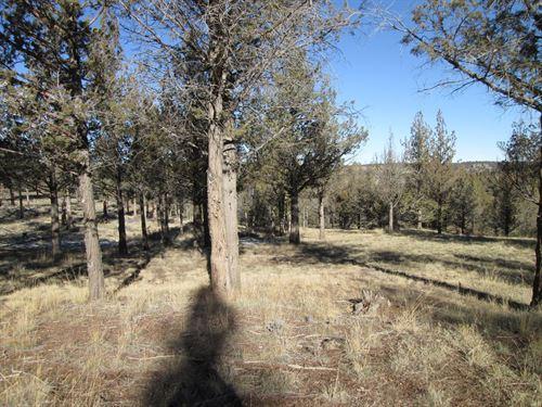 Acreage For Sale in Alturas CA : Alturas : Modoc County : California