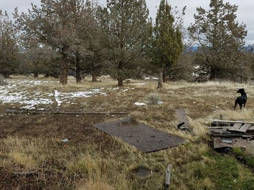 1.240 Acres Build-Able Land : Alturas : Modoc County : California
