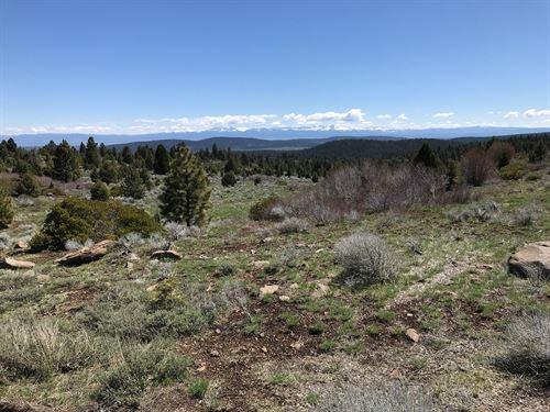 Land For Sale Northern California : Alturas : Modoc County : California