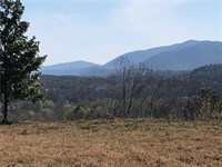 10 Ac, Commercial Property Ellijay : Ellijay : Gilmer County : Georgia
