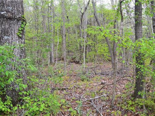 3.65 Acres Ellijay, Ga, N GA : Ellijay : Gilmer County : Georgia