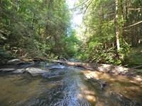 River Lot 4.24 Acre Pickett Mill : Ellijay : Gilmer County : Georgia