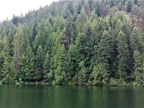North Idaho Lake Waterfront Land : Rathdrum : Kootenai County : Idaho