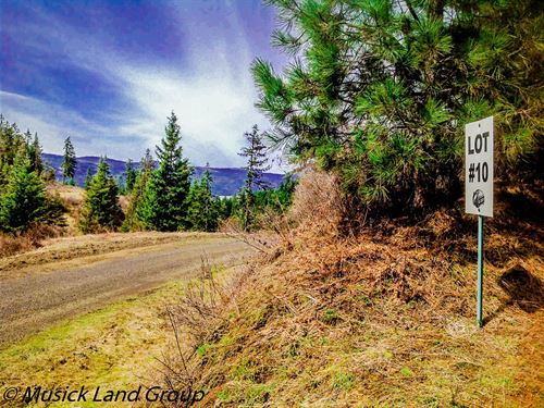 Building Lots Near Orofino, Idaho : Orofino : Clearwater County : Idaho