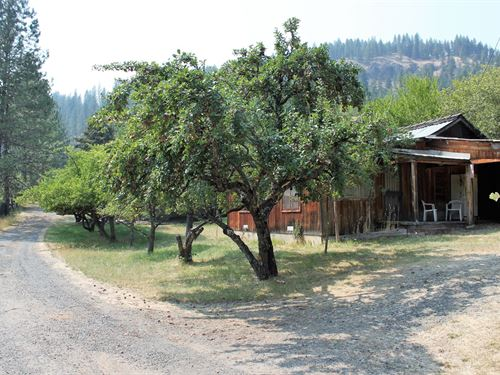 Close to Town Property Fantastic : Orofino : Clearwater County : Idaho