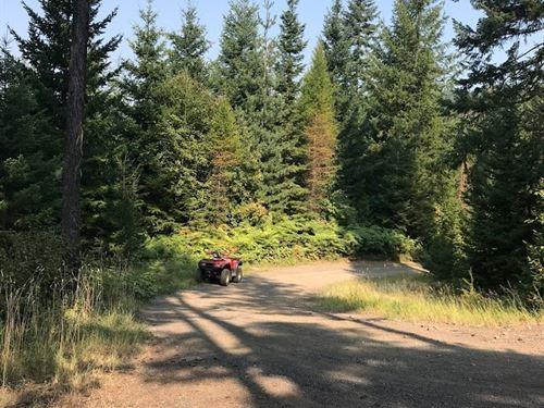 Land 30 Minutes From Orofino : Orofino : Clearwater County : Idaho
