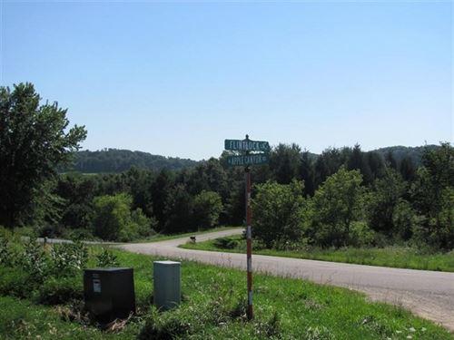 Lot Apple Canyon Lake, Apple River : Apple River : Jo Daviess County : Illinois