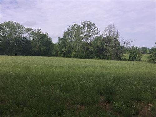 14.85 Acres, 2 Acre Field, Cabin : Liberty : Casey County : Kentucky