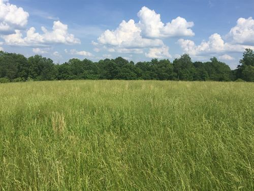 Building Lot / Country Setting : Liberty : Casey County : Kentucky