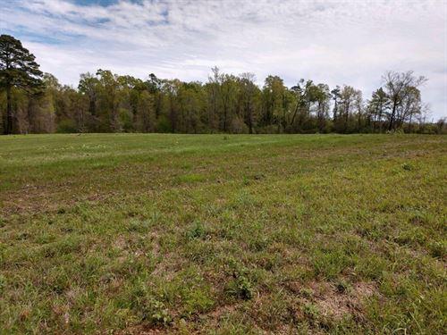 Land In Sterlington La For Sale : Sterlington : Union Parish : Louisiana