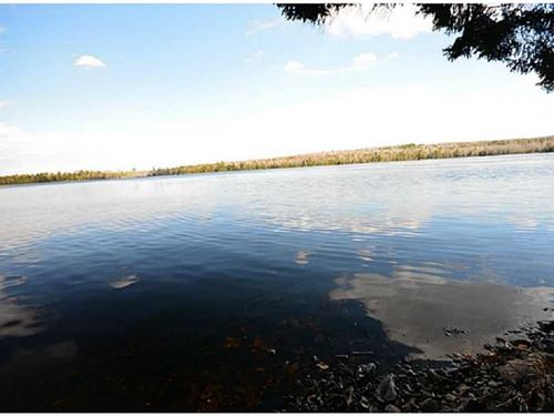 Maine Waterfront Land For Sale : Glenwood : Aroostook County : Maine