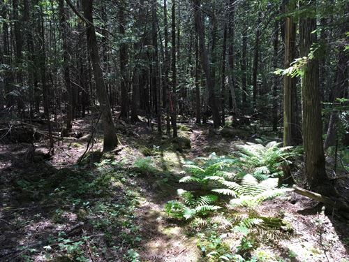 Maine Land For Sale in Old Town : Old Town : Penobscot County : Maine