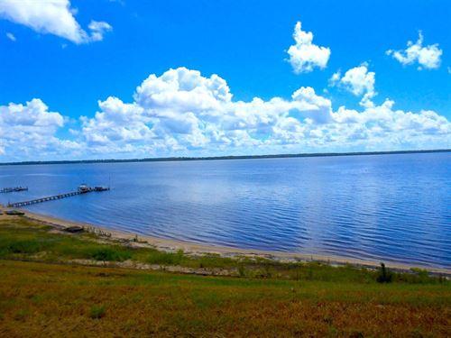 Premier Waterfront Lot Eastern, NC : Colerain : Bertie County : North Carolina