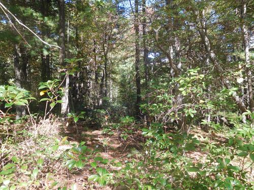 Perfect Vacation Home Location 9.4 : Glade Valley : Alleghany County : North Carolina
