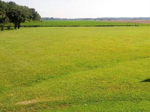 Cleared Lot Beautiful Water Views : Hertford : Perquimans County : North Carolina