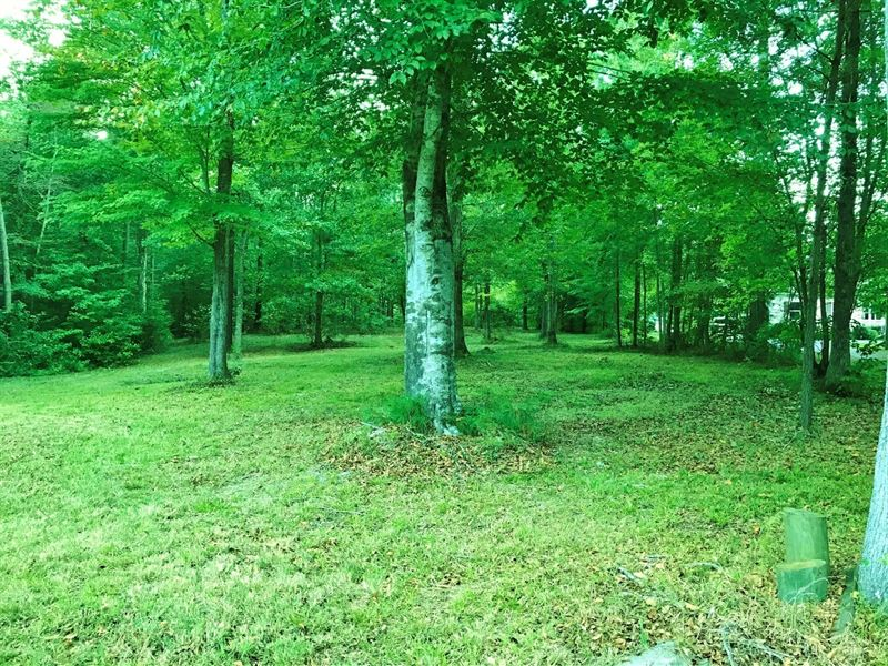 Water Access Lot With Pier And Dock : Hertford : Perquimans County : North Carolina