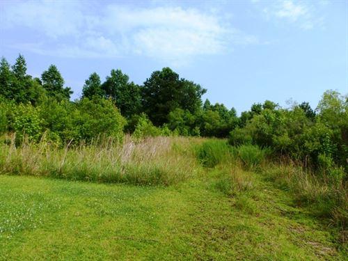 20 Acres Residential Development : Magnolia : Duplin County : North Carolina