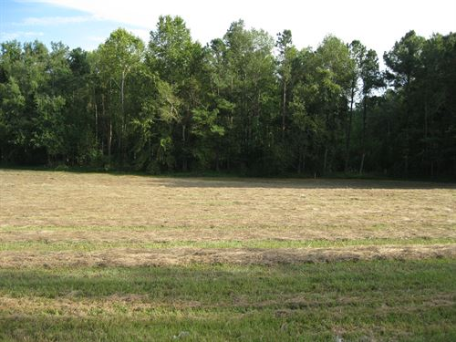 Road Front Home Site In Nash County : Middlesex : Nash County : North Carolina