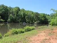 7.5 Acres With Pond in Pinnacle, NC : Pinnacle : Stokes County : North Carolina