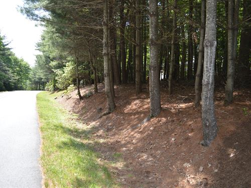 Wooded Building Lot Golf Course : Roaring Gap : Alleghany County : North Carolina