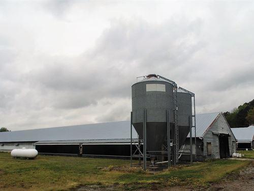Chicken/Poultry Farm Roxobel, North : Roxobel : Bertie County : North Carolina
