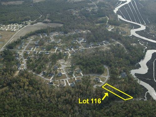 Wooded Lot In Sneads Ferry, NC : Sneads Ferry : Onslow County : North Carolina
