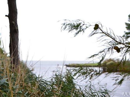 Recreational, Waterfront Lot : Shiloh : Camden County : North Carolina