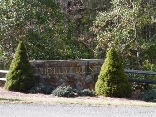 Wooded Building Lot, Holly Run : Sparta : Alleghany County : North Carolina