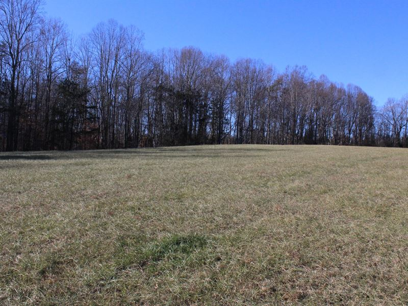 Land For Sale in Westfield NC : Westfield : Surry County : North Carolina