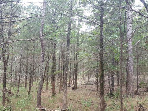 Kiamichi Wilderness Recreational : Moyers : Pushmataha County : Oklahoma