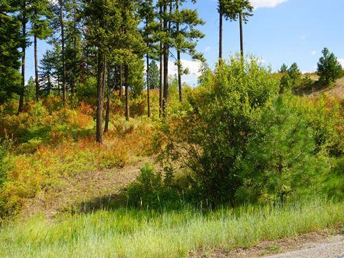 10 Acre View Property Mead, WA : Mead : Spokane County : Washington
