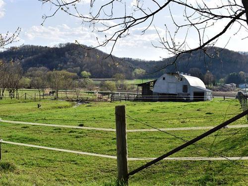 Horse Hobby Farm Richland CO WI : Richland Center : Richland County : Wisconsin