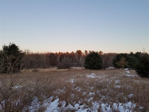 Vacant Buildable Lot Waupaca River : Waupaca : Wisconsin